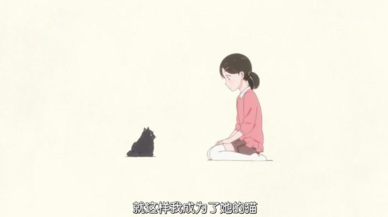 【捕鱼王】泡面番《她和她的猫》 只有四话却能让你看哭