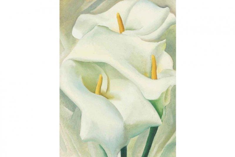 【捕鱼王】当女性生殖器被画在花里 你还能直视它吗