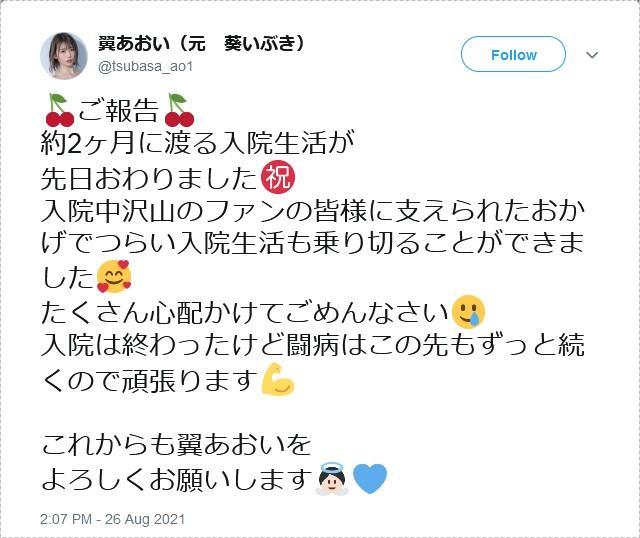 【捕鱼王】Twitter、IG全删、事务所移除资料、翼あおい消灭!